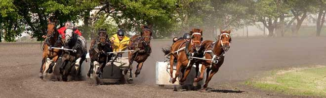 Wagon Races